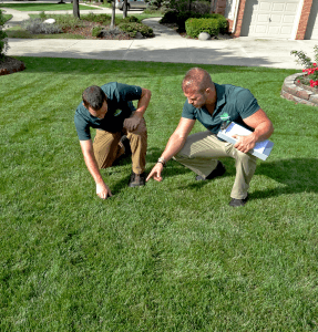My Fertilizing Company - Call today for a free quote My