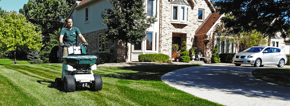 My Fertilizing Company Andrew Walsh Lawn Care Livonia