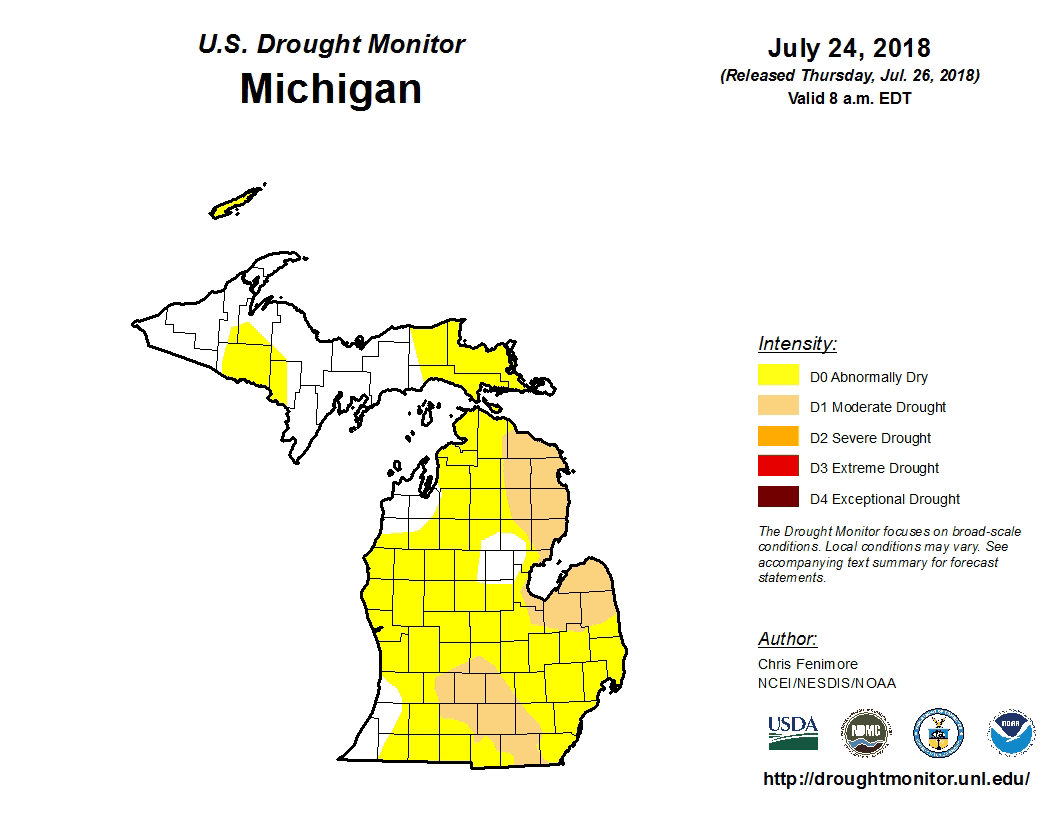 This is a diagram of Michigan drought