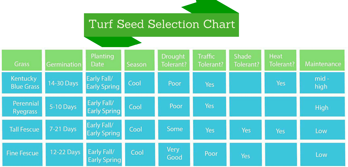 The 5 Tips For Germinating Grass Seedmy Fertilizing Company Seed Germination Diagram This Is A That Shows How To Germinate Different Types Of