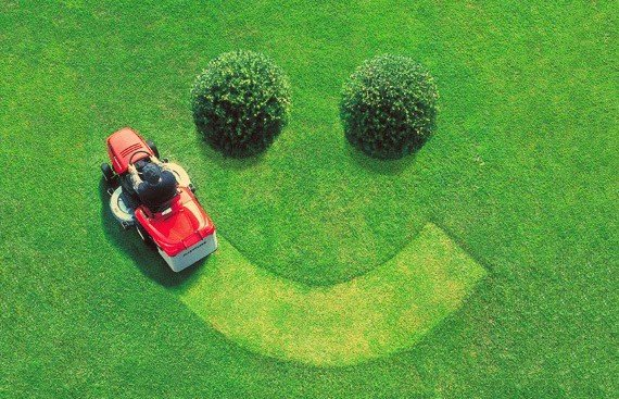 Fun Lawn Care Facts