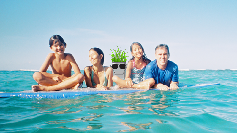 Here Is An Image Of Growbot In Hawaii