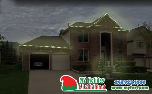 An Image Of My Fertilizing Company's Holiday Light Design In Novi Michigan